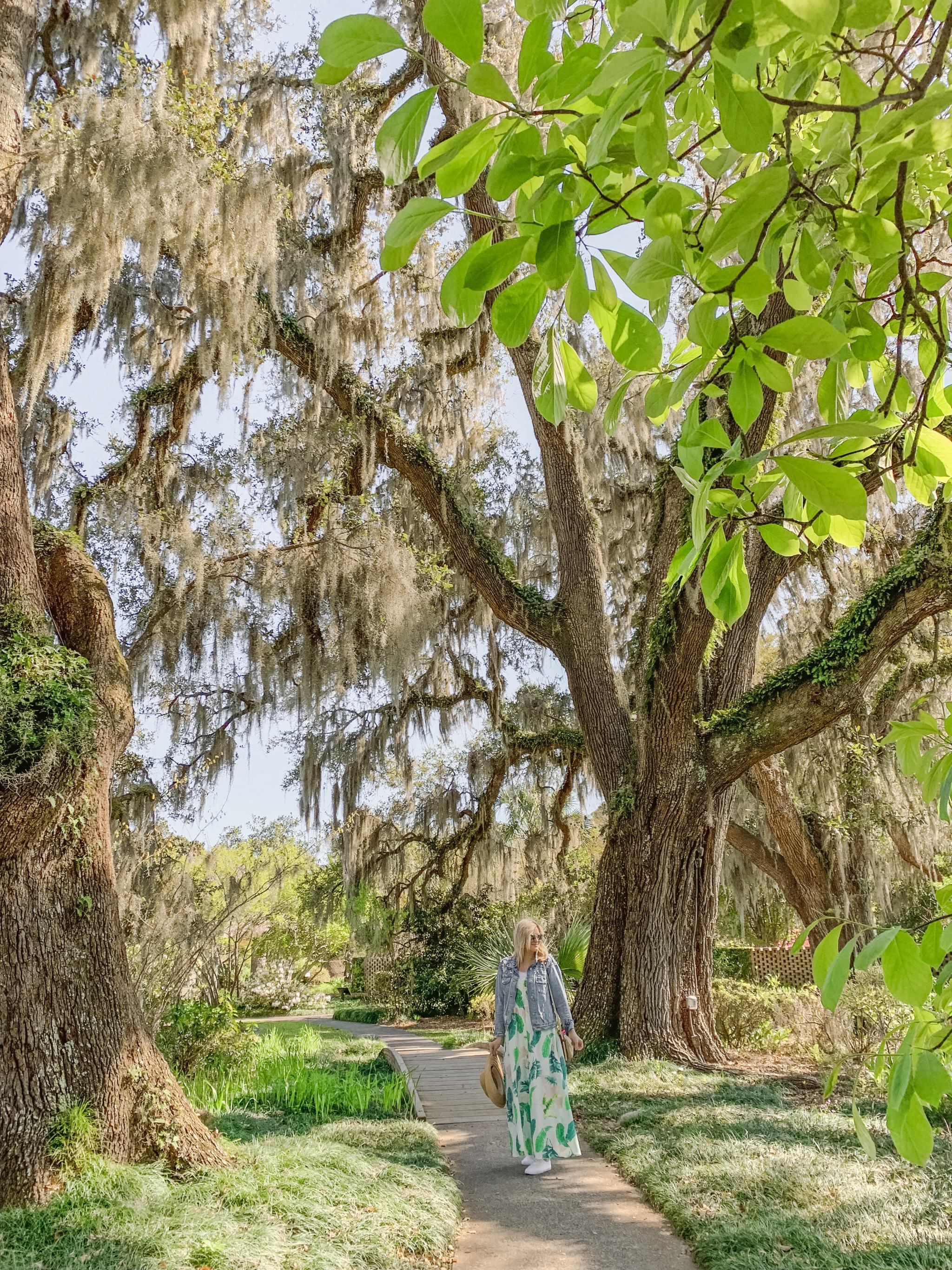 Bijuleni - Brookgreen Gardens, Myrtle Beach Vacation Guide