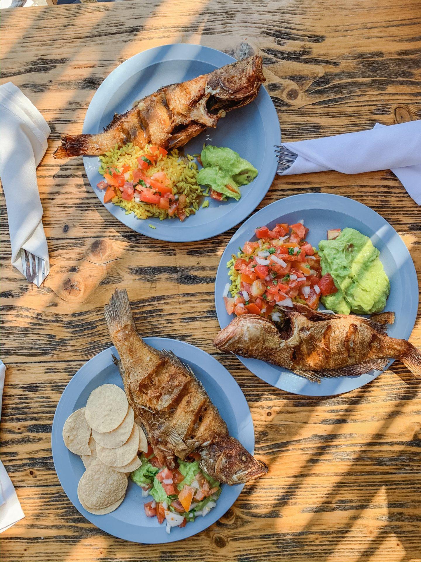 Ocean Riviera Paradise, All Inclusive Food Review - Pez Vella Restaurant