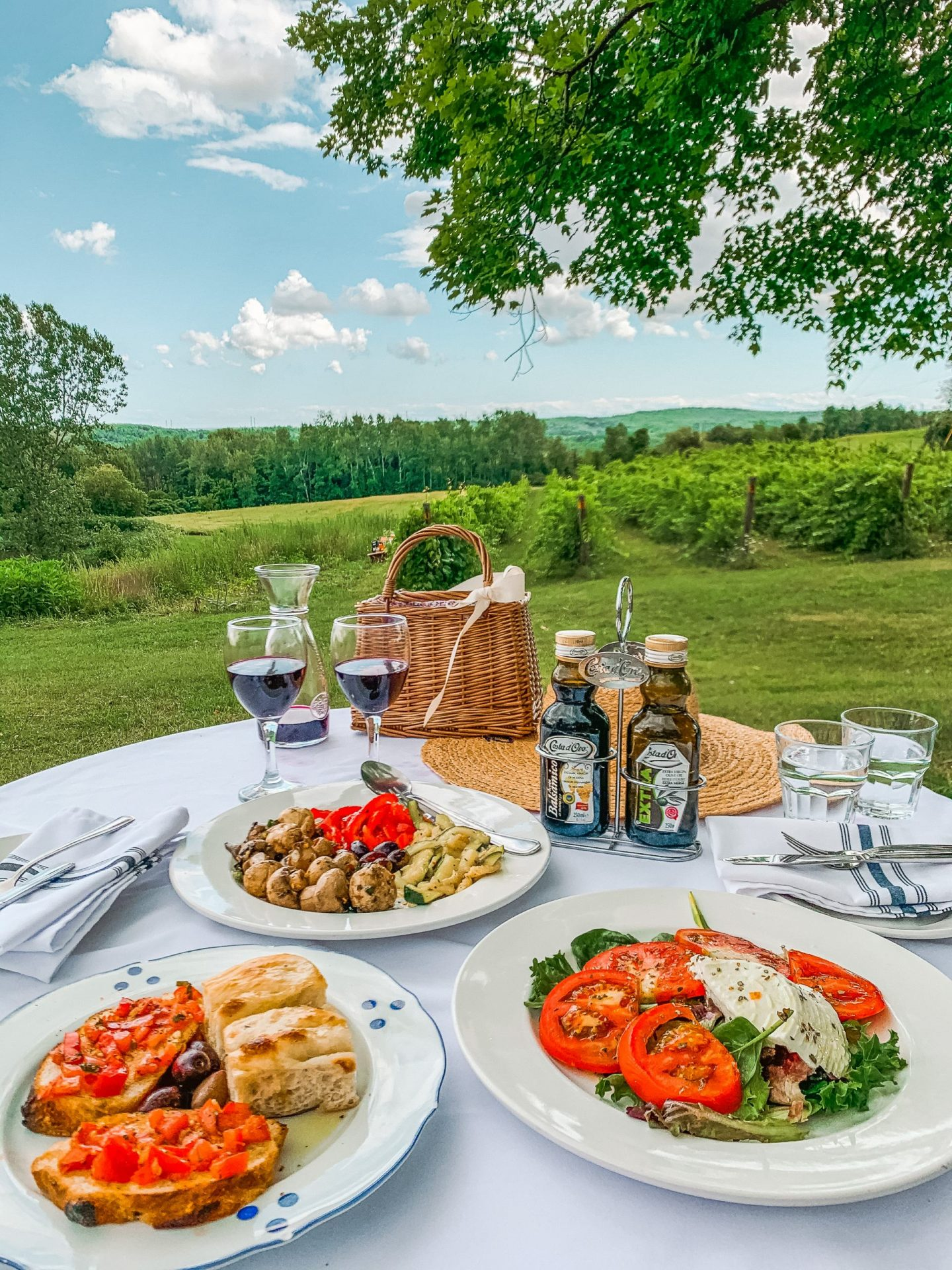 A beautiful and serene Italian lunch At Villa Conti Oak Heights Estate Winery. A short drive from Toronto with stunning views