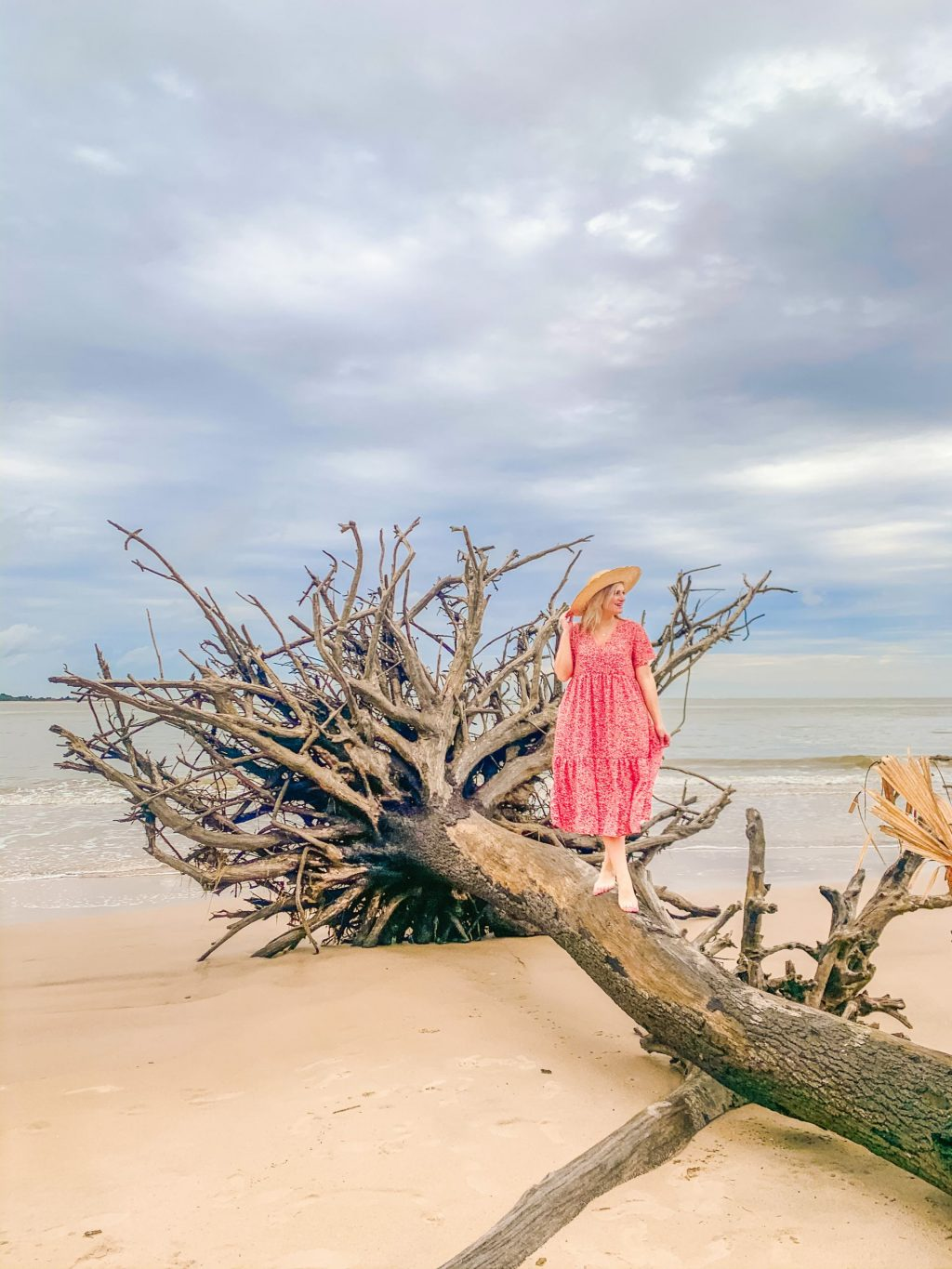 Jacksonville, Florida Travel Guide. Best activities to do and places to see. This fun, detailed Jacksonville Travel Guide highlights everything you need to know for your trip including this fun location- Boneyard Beach