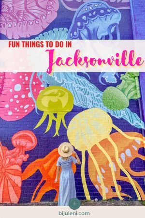 Keep reading my detailed Jacksonville Florida travel guide with the top things to do, where to eat and where to stay.